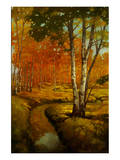 Woodland Stream II Premium Giclee Print by Graham Reynolds
