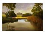 Reeds Birchs and Water I Premium Giclee Print by Graham Reynolds