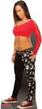 AJ - WWE Lifesize Standup Cardboard Cutouts