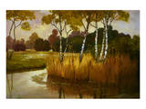 Reeds Birchs and Water II Premium Giclee Print by Graham Reynolds