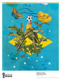 Made in Brazil Collectable Print by Eduardo Recife