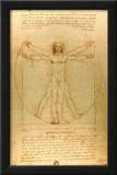 Leonardo Da Vinci (Vitruvian Man) Art Poster Print Prints