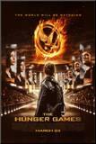 Hunger Games - Stadium Mounted Print