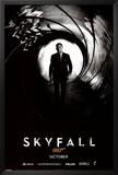 James Bond - Skyfall Teaser Photo