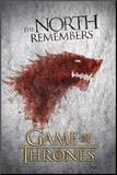 Game of Thrones The North Remembers TV Poster Print Impressão montada