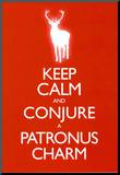Keep Calm and Conjure a Patronus Charm Carry On Spoof Poster Print Impressão montada