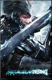 Metal Gear Rising - Blade Mounted Print