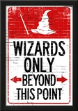 Wizards Only Beyond This Point Sign Poster Posters