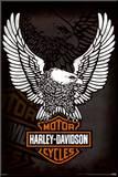 Harley Davidson - Eagle Mounted Print
