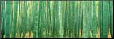 Japan (Bamboo Forest) Mounted Print