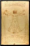 Leonardo Da Vinci (Vitruvian Man) Art Poster Print Mounted Print