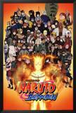 Naruto Anninversary Poster