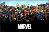 Marvel Comics Universe Mounted Print