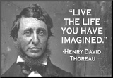 Live The Life You Have Imagined Henry David Thoreau Quote Poster Mounted Print