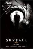 James Bond - Skyfall Teaser Mounted Print