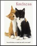 Kindness Two Cute Kittens Lámina montada en tabla