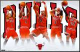 Bulls - Team 2011 Mounted Print