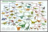 Dinosaur Evolution Educational Science Chart Poster Umocowany wydruk