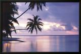Tropical Sunset Prints