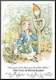 Beatrix Potter Tale Peter Rabbit Art Print POSTER cute Kunstdruk geperst op hout