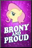 Brony and Proud Pony Poster Mounted Print