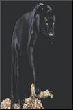 Black Panther (On Log) Art Poster Print Kunstdruk geperst op hout