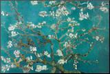 Amandelbloesem Kunstdruk geperst op hout van Vincent van Gogh