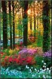 Flower Forest Mounted Print