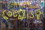CoExist Mounted Print