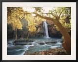 Havasu Falls Prints by W. E. Garrett