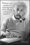 Einstein - Wisdom Mounted Print