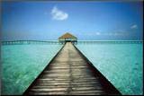 Jetty Maldives Mounted Print by Massimo Borchi