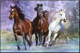 Running Mounted Print by Bob Langrish