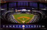 New York Yankees Stadium Mounted Print