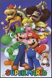Nintendo Mounted Print