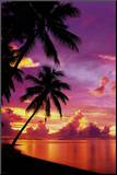 Tahitian Sunset Mounted Print