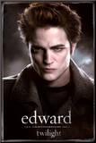 Twilight (Video Release) Druck aufgezogen auf Holzplatte