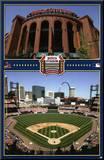 Busch Stadium Mounted Print