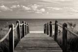Paraíso Póster por Dennis Frates
