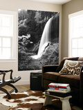 View of Middle North Falls, Silver Falls State Park, Oregon, USA Wall Mural by Adam Jones