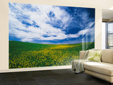 View of Wild Mustard Flowers Field, Washington, USA Wall Mural – Large by Adam Jones