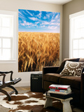 Wheat Field, Oregon, USA Wall Mural by Stuart Westmorland