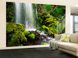 Waterfall, Mt Hood National Forest, Columbia Gorge Scenic Area, Oregon, USA Decorazione murale - Grande di Stuart Westmorland