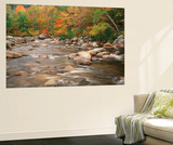 Swift River in Autumn, White Mountains National Forest, New Hampshire, USA Wall Mural by Adam Jones