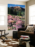 Lupines and Alpine Fir, Snowcapped Mountain, Jarbidge, Jarbidge Wilderness, Nevada, USA Posters af Scott T. Smith