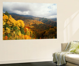Great Smoky Mountains National Park in Autumn from Thomas Ridge, North Carolina, USA Wall Mural by Adam Jones