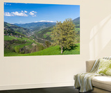 Eisack Valley Near Klausen and the Brenner Pass, South Tyrol, Italy Plakat af Martin Zwick