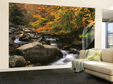 Oconaluftee River, Great Smoky Mountains National Park, North Carolina, USA Wall Mural – Large by Adam Jones