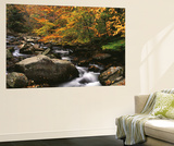 Oconaluftee River, Great Smoky Mountains National Park, North Carolina, USA Wall Mural by Adam Jones