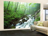 View of Cove Creek Covered with Fog, Pisgah National Forest, North Carolina, USA Wall Mural – Large by Adam Jones